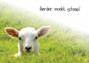 MA10039 Gospel Oneliner Herder zoekt schaap