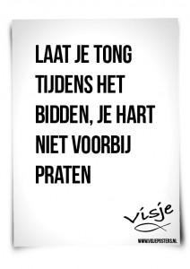 Visje_poster_164