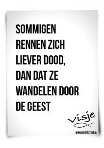 Visje_poster_165