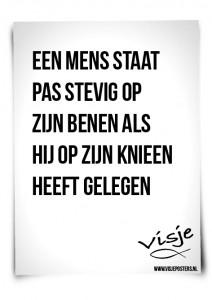 Visje_poster_180