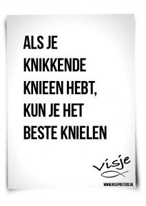 Visje_poster_189