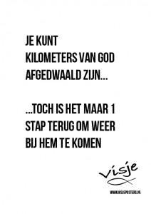 Visje_poster_21