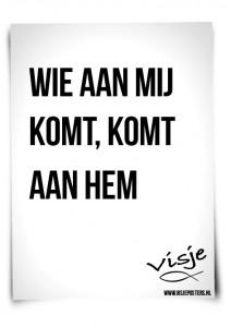 Visje_poster_211