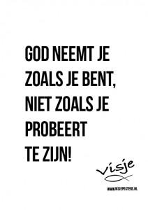 Visje_poster_223