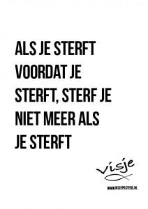 Visje_poster_232