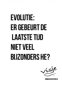 Visje_poster_25
