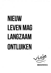 Visje_poster_274