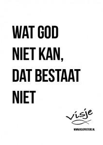 Visje_poster_310
