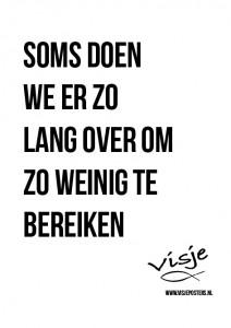 Visje_poster_319