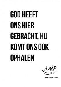 Visje_poster_348