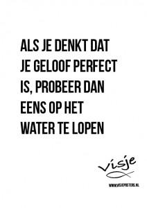 Visje_poster_355
