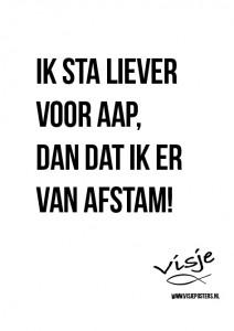 Visje_poster_65