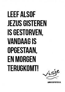 Visje_poster_71