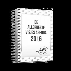visje-agenda-2016
